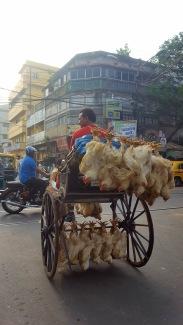 Mezzo di trasporto per polli